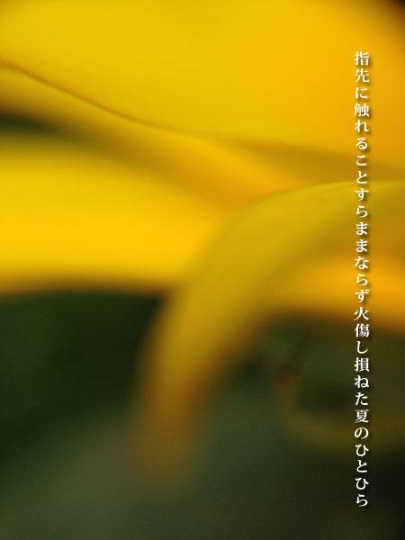20140902-001