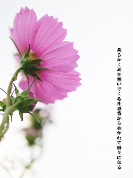 20140910-001